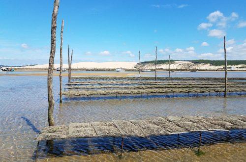 arcachon-bassin