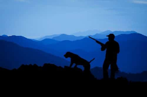 chasse loisir