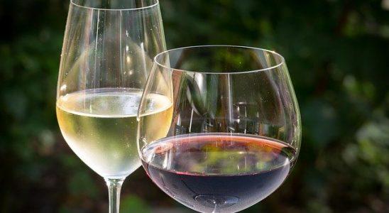de quoi est composé le vin ?